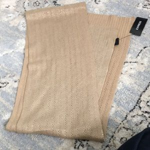 NWT EXPRESS SCARVE
